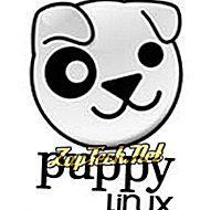 Cos'è Puppy Linux?